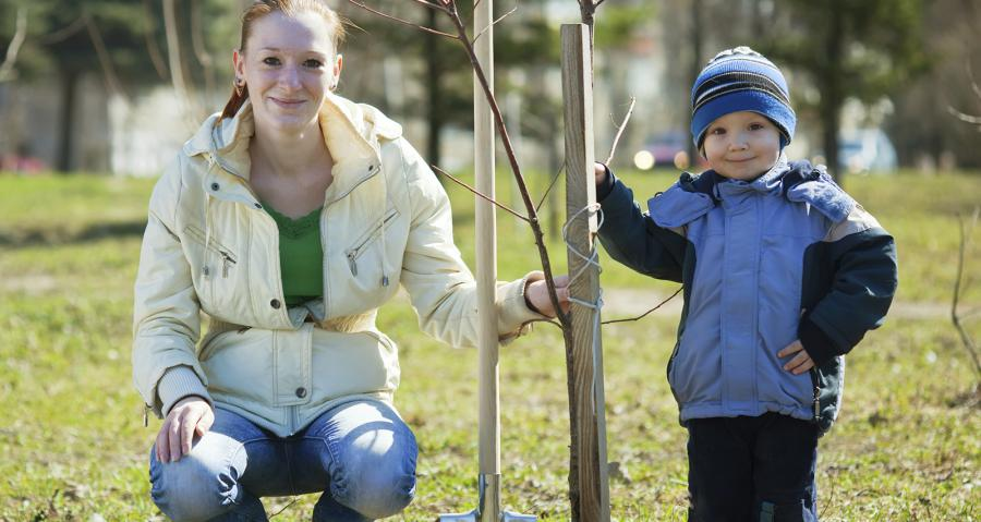 Mother and son planting a tree